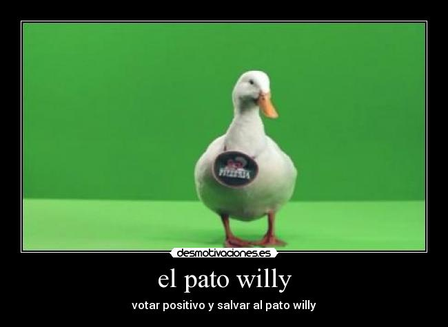 el pato willy -