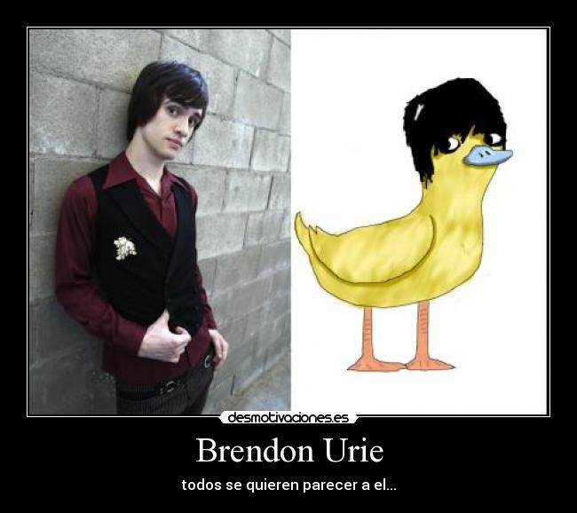 Brendon Urie Desmotivaciones