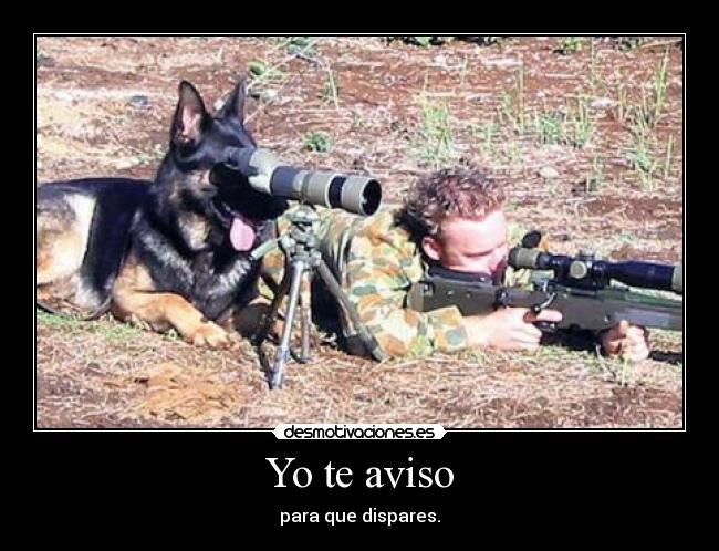 carteles perro militares desmotivaciones