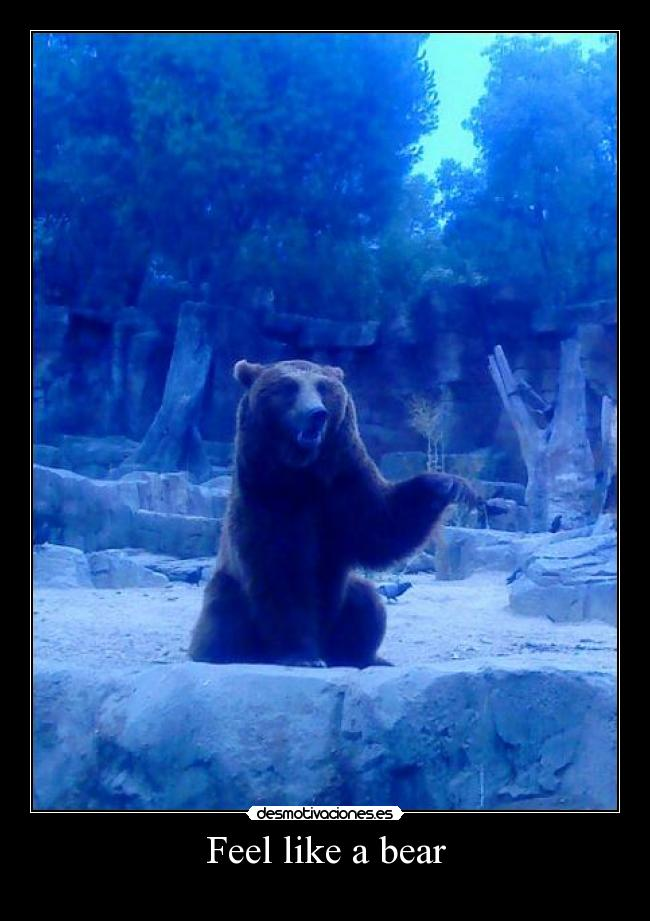 Feel like a bear -