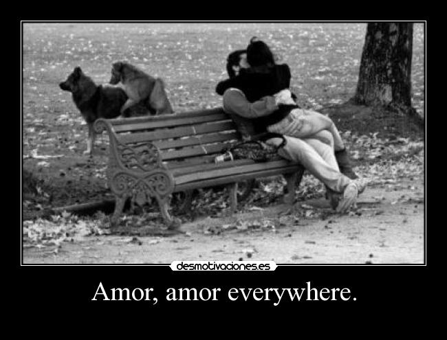 Amor, amor everywhere. -