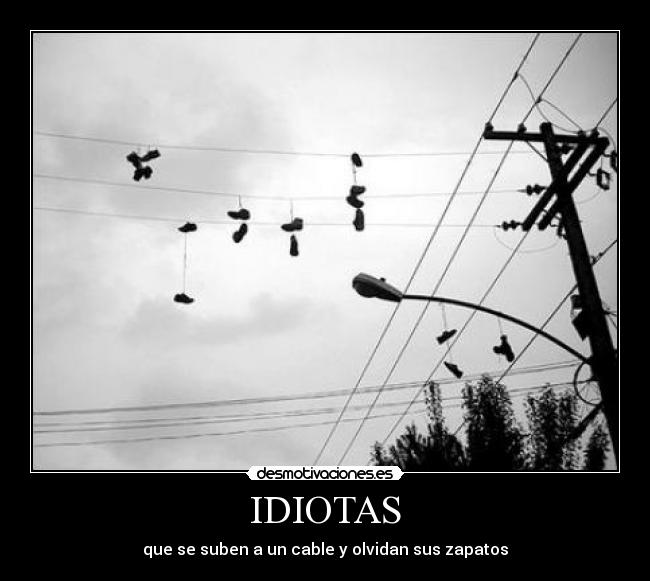 IDIOTAS - que se suben a un cable y olvidan sus zapatos