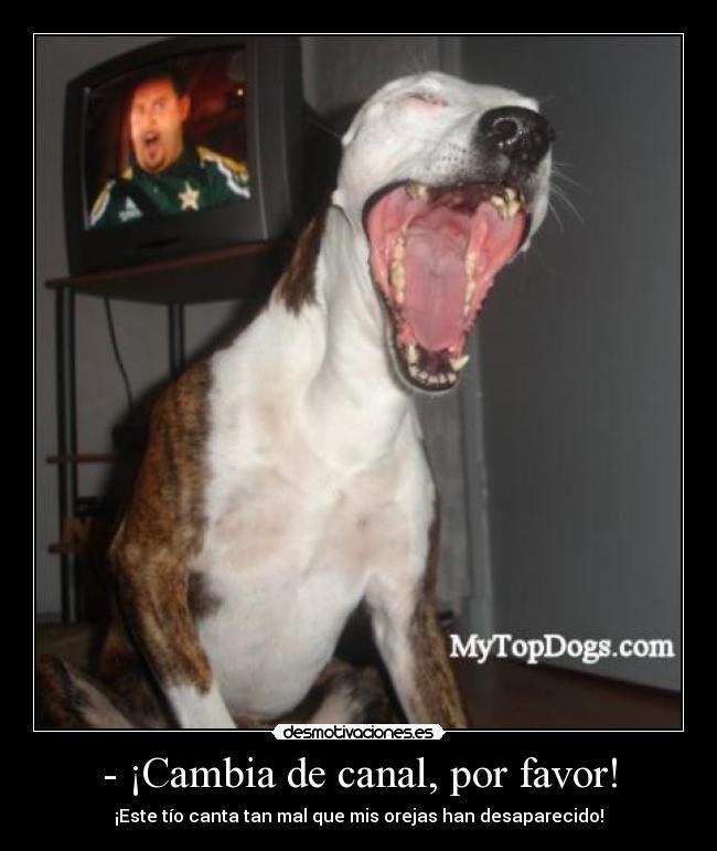 carteles perro furioso desmotivaciones