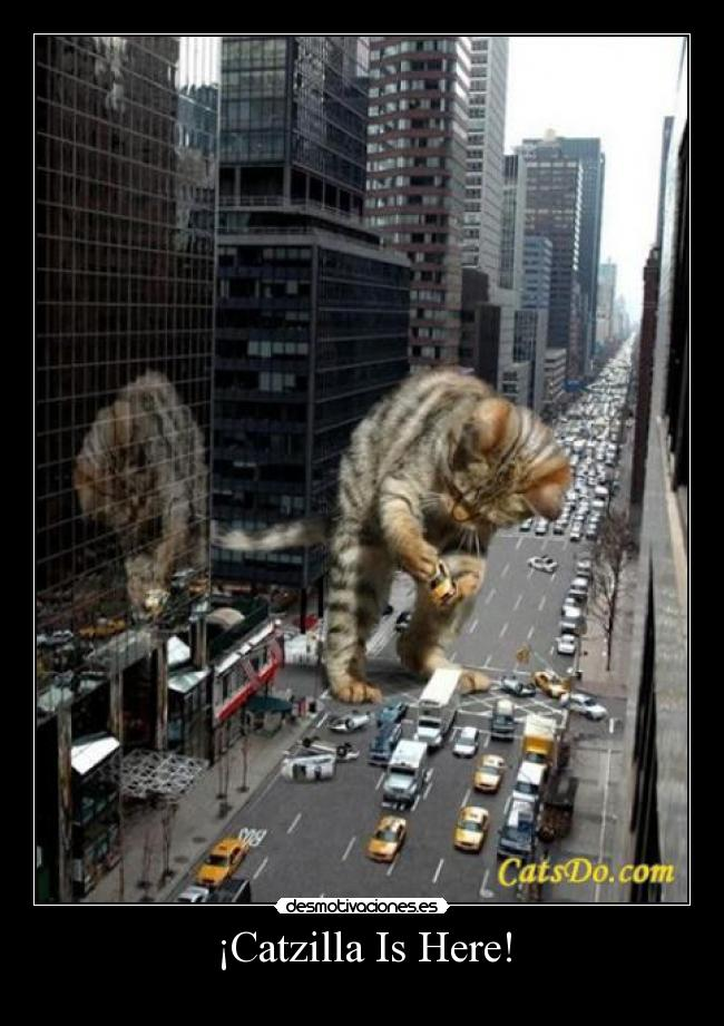 ¡Catzilla Is Here! -