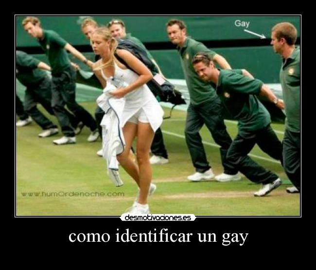 Identificar A Un Gay 34