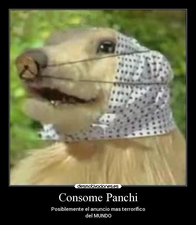 Consome Panchi   Desmotivaciones