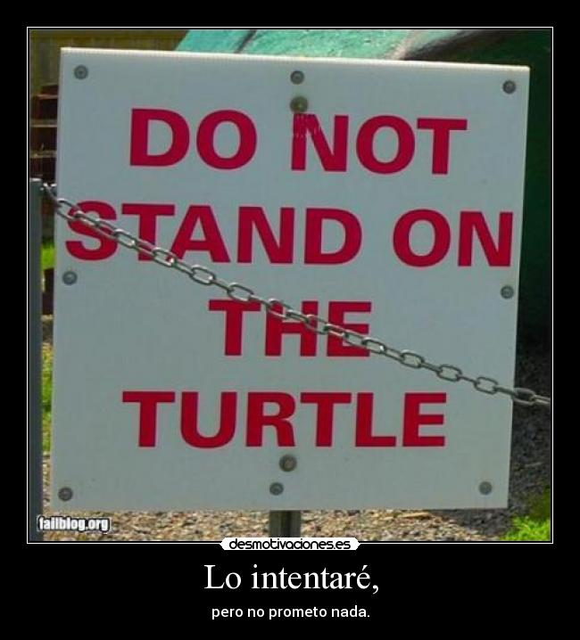 carteles not stand the turtle sokol07 desmotivaciones