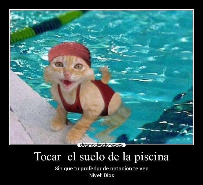 Im genes y carteles de piscina pag 119 desmotivaciones for Putas en la piscina