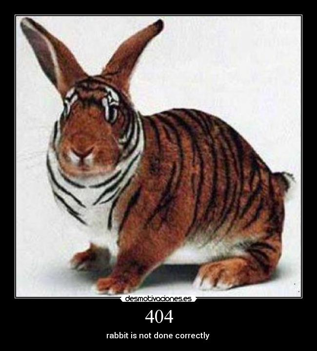 404 - rabbit is not done correctly
