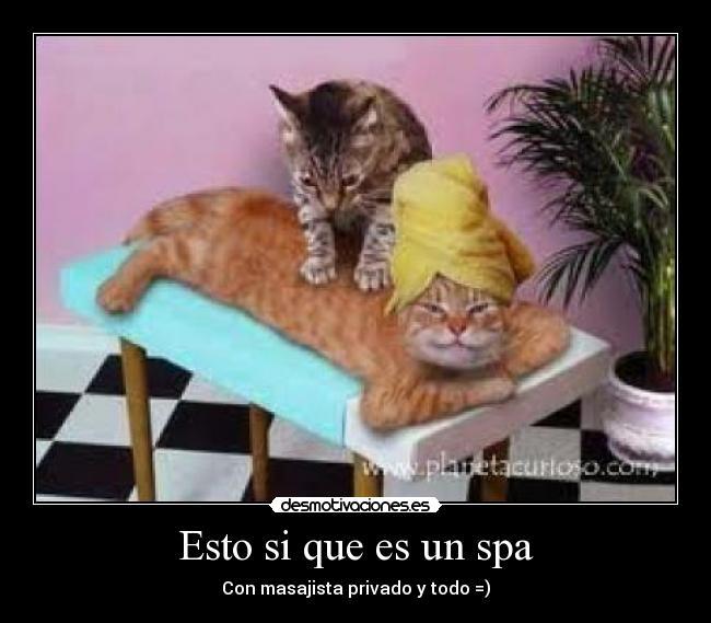 bueno masaje tetas
