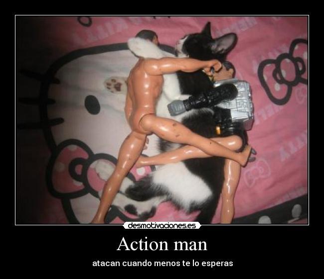 Clip de pelea de gato desnudo