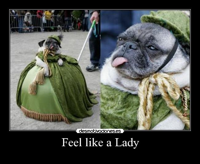 Feel like a Lady -
