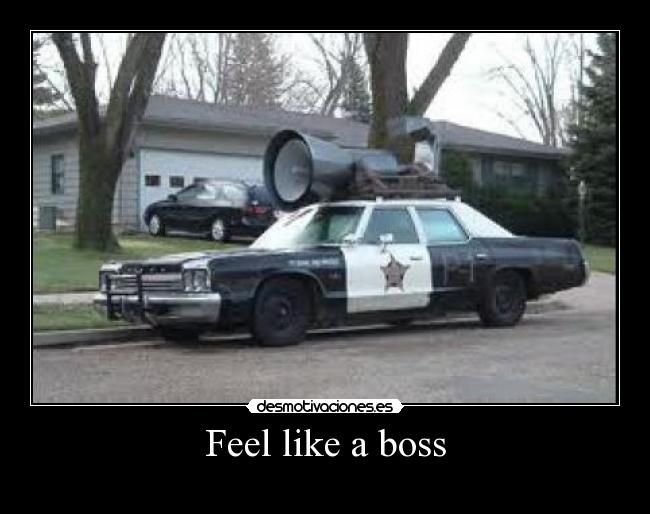 Feel like a boss -