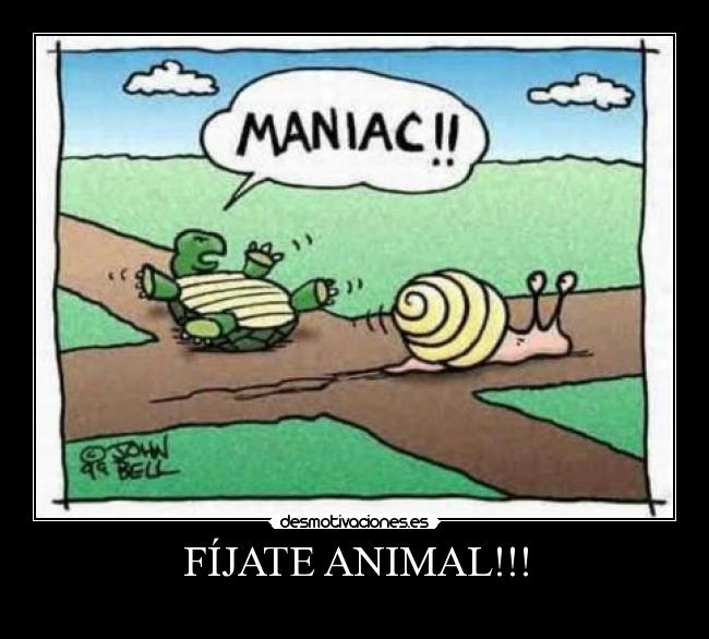 FÍJATE ANIMAL!!! -