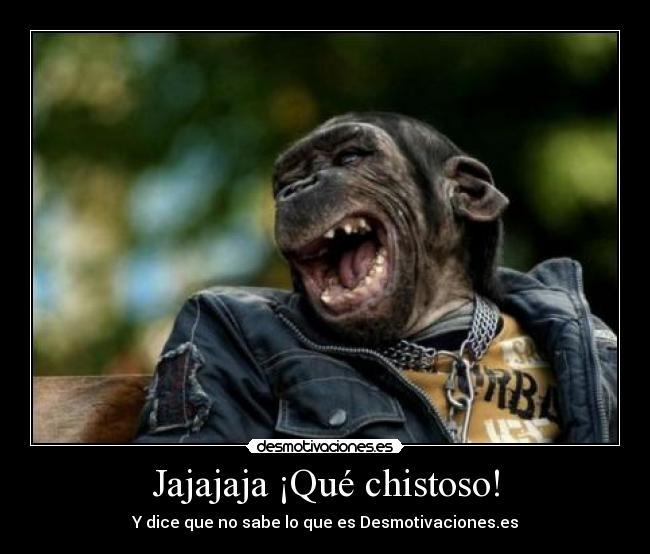 fotos chistoso: