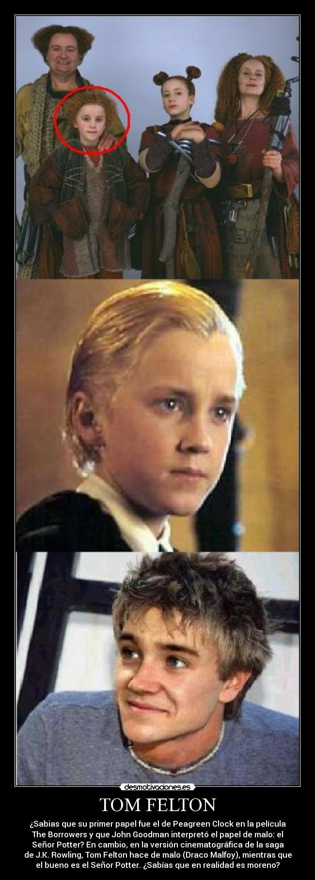 carteles harry potter tom felton morenos desmotivaciones