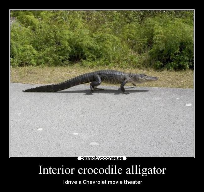 pics photos interior crocodile alligator i drive a chevrolet movie. Cars Review. Best American Auto & Cars Review