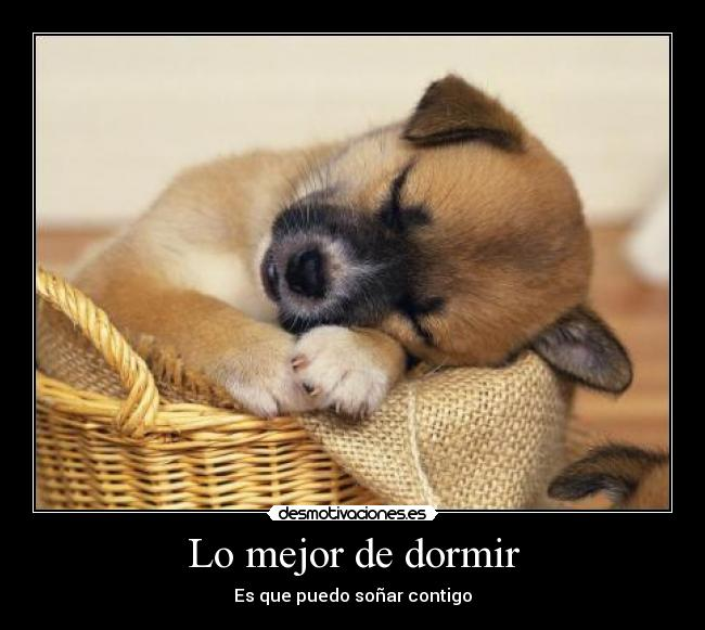 Lo mejor de dormir desmotivaciones - Lo mejor para dormir ...