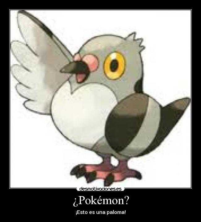 Los Pokemons existen? - Poke Masters - 3DJuegos