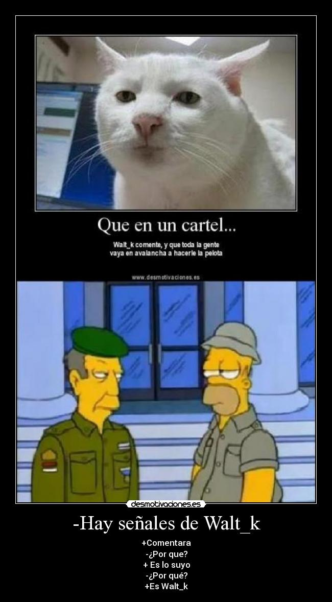 carteles skiner homer intentan capturar gato desmotivaciones