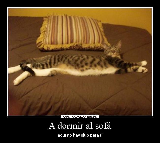 A-dormir-al-sofa