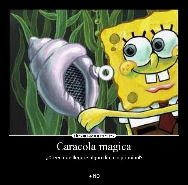 Caracola Magica
