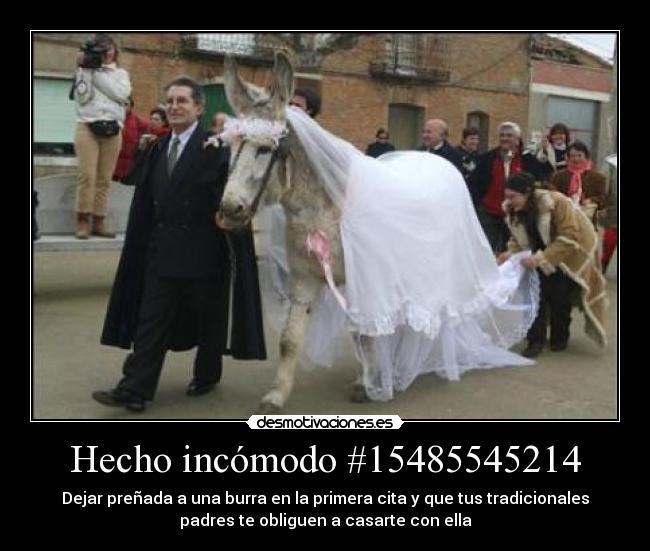 Hecho-incomodo-15485545214