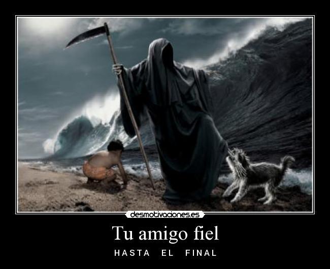 carteles amigo fiel muerte tsunami nino desmotivaciones