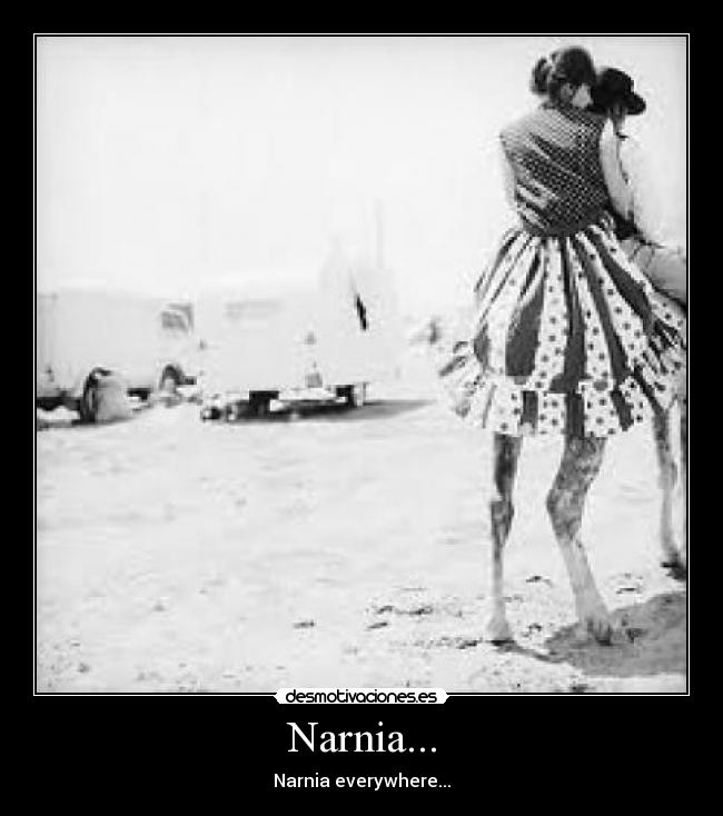 Narnia... - Narnia everywhere...