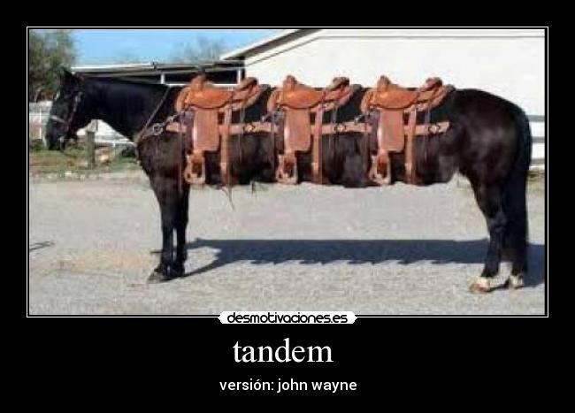 carteles caballos wayne john vaqueros tandem bici desmotivaciones