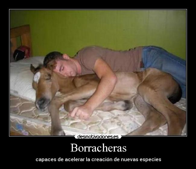 Borracheras