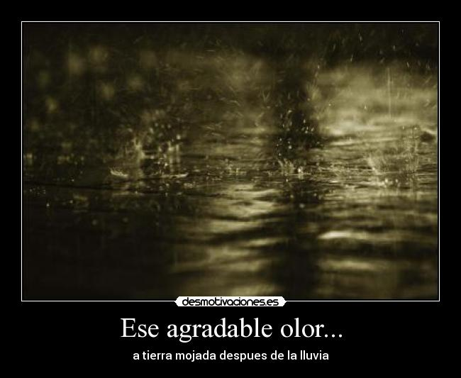 Ese agradable olor... -