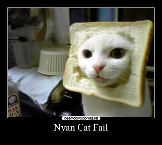carteles fail nyan cat tostada fail desmotivaciones