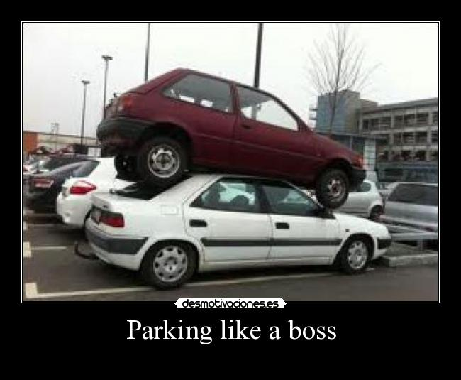 Parking like a boss -