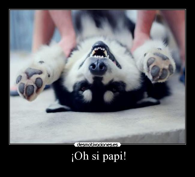¡Oh si papi! -
