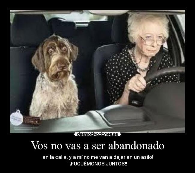 el abandono de los ancianos: