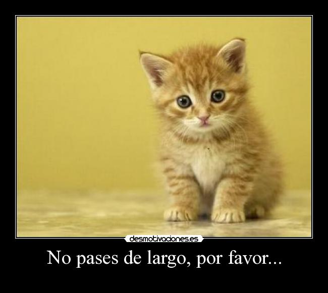 No pases de largo, por favor... -