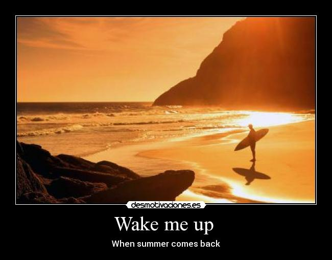 Wake me up  - When summer comes back
