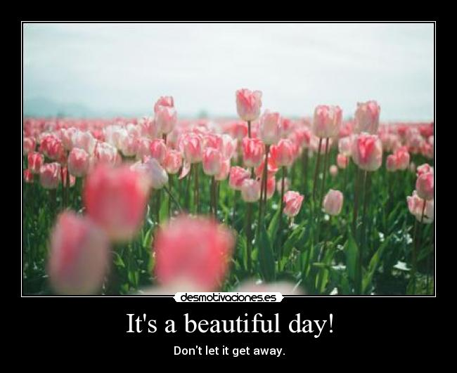 Its a beautiful day! - Dont let it get away.