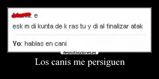 Los canis me persiguen -