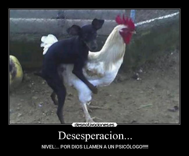 Desesperacion Desmotivaciones