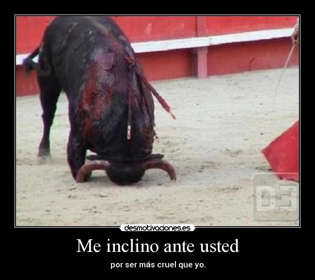 Me-inclino-ante-usted