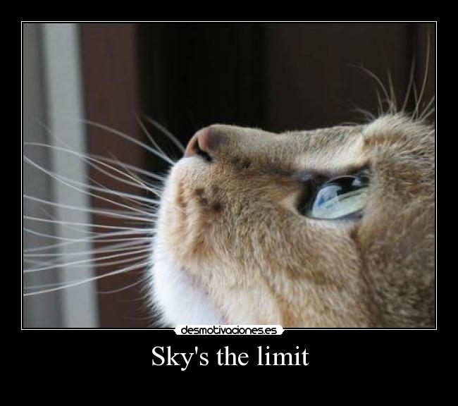 Skys the limit -