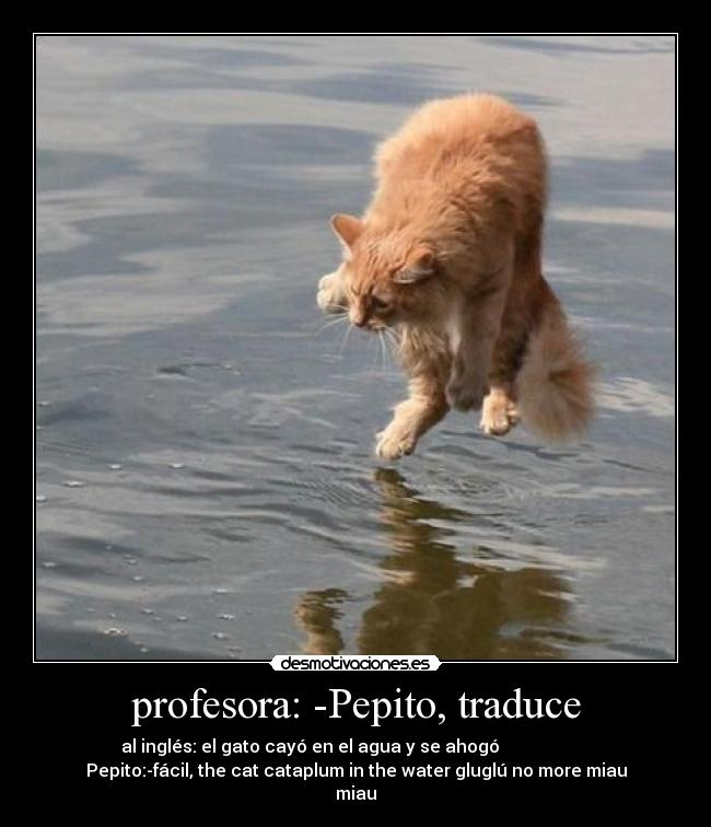 profesora: -Pepito, traduce - al inglés: el gato cayó en el agua y se ahogó                      Pepito:-fácil, the cat cataplum in the water gluglú no more miau miau