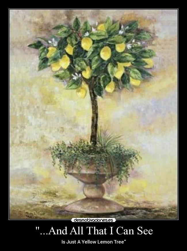 ...And All That I Can See - Is Just A Yellow Lemon Tree