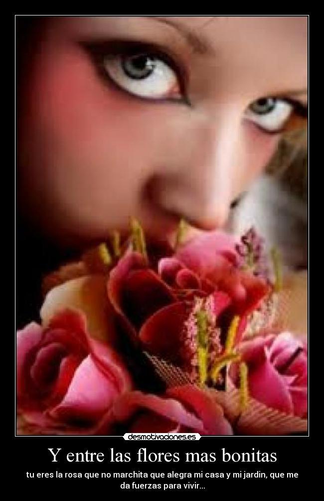 Y entre las flores mas bonitas desmotivaciones for Las plantas mas bonitas