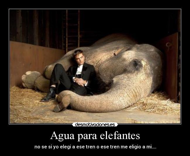 Carteles Agua Para Elefantes Desmotivaciones