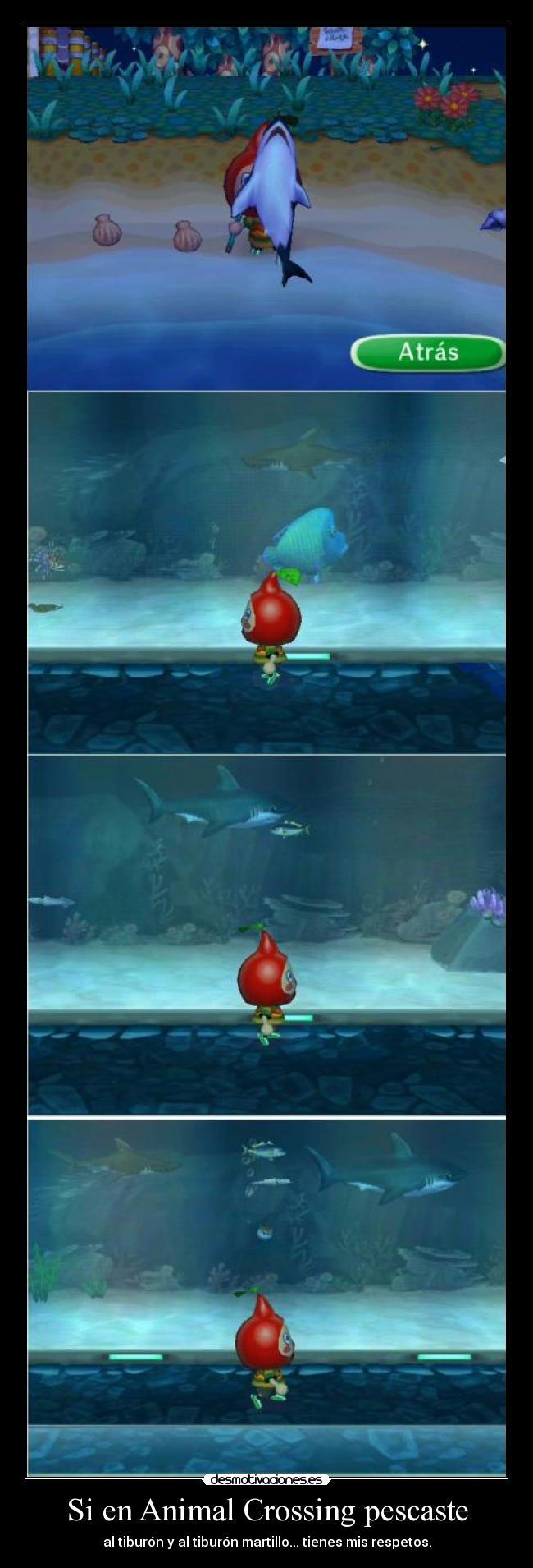 Si en Animal Crossing pescaste - al tiburón y al tiburón martillo... tienes mis respetos.