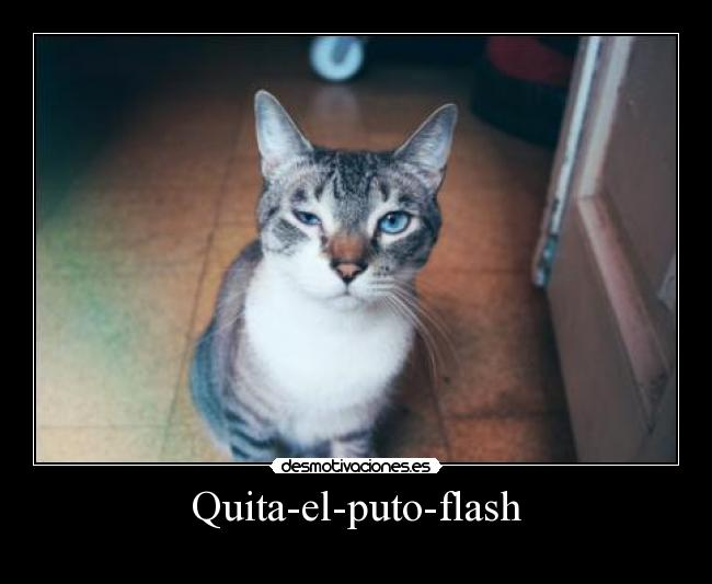 Quita-el-puto-flash -