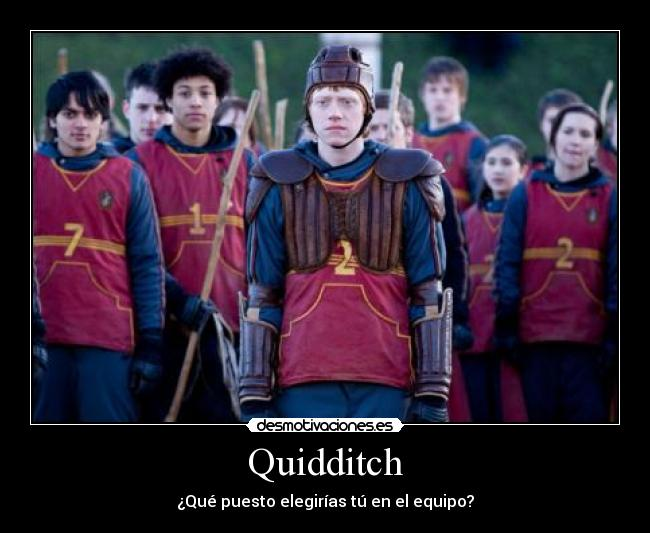 harry potter quidditch through the ages pdf